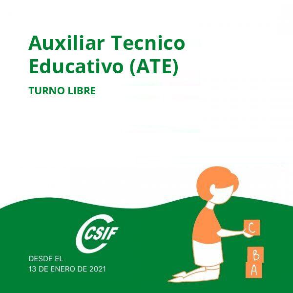 Auxiliar Técnico Educativo (ATE)