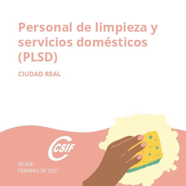 Personal de Limpieza y Servicios Domésticos (PLSD) Ciudad Real